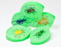 Sudzfun – donating some of It's Bugs Leaf Soaps